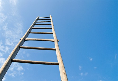 Climb The Digital Career Ladder